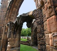 Elgin Arches by kalaryder