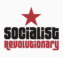Socialist Revolutionary Red Star Stickers by NeoFaction