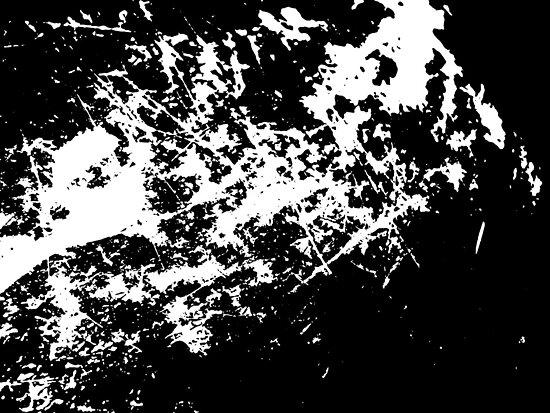 Surface by josefp