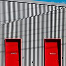 Red doors by Colleen Milburn