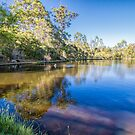 King Trout Farm, Pemberton, Western Australia by Elaine Teague