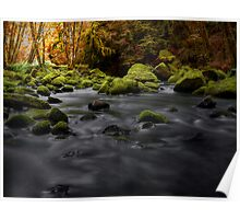 Lake Creek Glow ~ Fall Colors ~ Poster