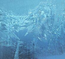 Frozen     by Sarah Cowan