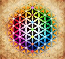 Flower of Life by Paul Bonifacic
