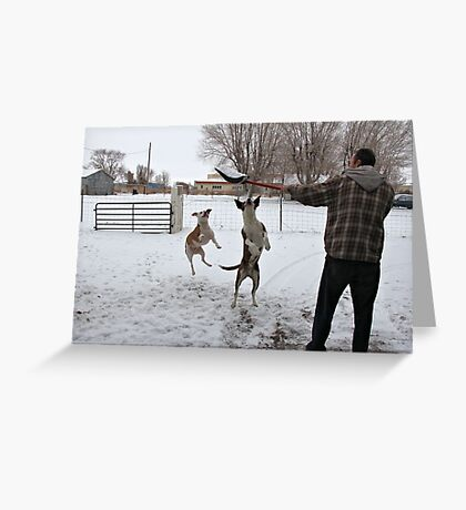 Buster and Sweetie Playing with dad and the snow~  Greeting Card