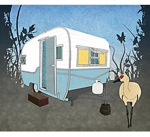 Travel Trailer & Sandhill Crane  Photographic Print