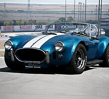 1966 Shelby Cobra 427 cu. in. by DaveKoontz