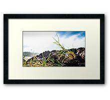 Grass hopper view of ocean Framed Print