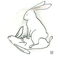 Bunny Kama Sutra - The Andromaches Position by Bronwyn Schuster