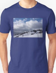 Sunny Snowstorm - a Mountain View to Remember T-Shirt