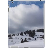 Sunny Snowstorm - a Mountain View to Remember iPad Case/Skin