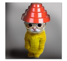 """CATS IN HATS """"Are We Not Kittens?"""" by Patty McNally"""