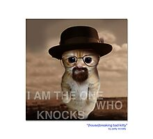 "CATS IN HATS ""(house) Breaking Bad Kitty"" Photographic Print"