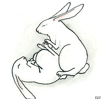 Bunny Kama Sutra - The Indra Position by Bronwyn Schuster