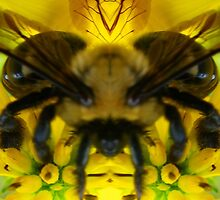 Telepathic Bee - Nature's Mirror Image by Nature's Mirror Image