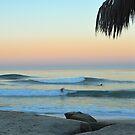 Dawn Patrol Windansea by deepbluwater