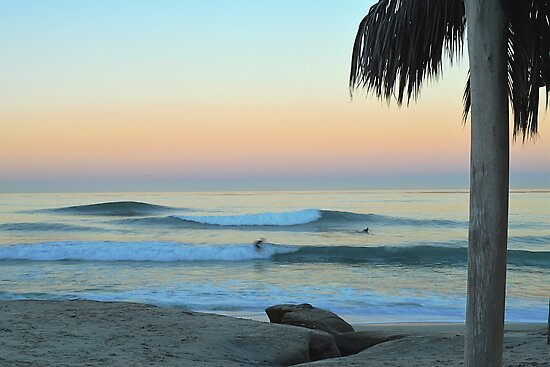 Dawn Patrol Windansea by deepbluwater