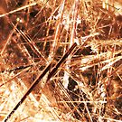 Crossfire (Rutilated Quartz) by Stephanie Bateman-Graham