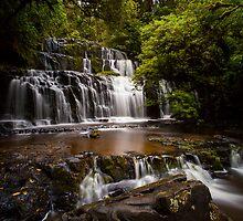 Purakaunui Falls by Liam Robinson