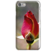 Rose iPhone Case/Skin
