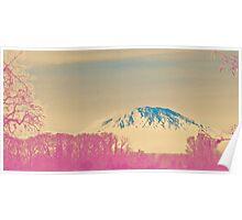 turning japanese Poster