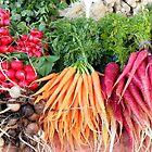 Taste the Harvest by Lissie EJ