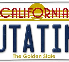 Back to the future Delorean License Plate by MuralDecal