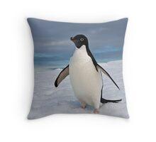 Adelie Penguin seeks Fame Throw Pillow