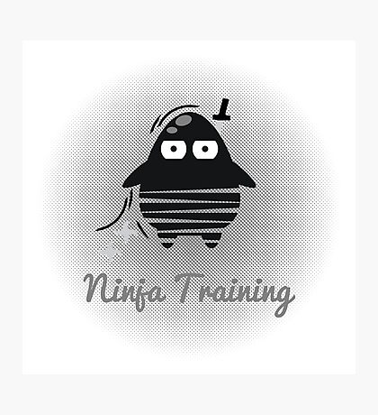 Digi-Fitties: Ninja-Training Photographic Print
