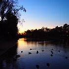 Sunset on the Murray by Caroline Martin