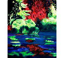 Blue swamp Photographic Print