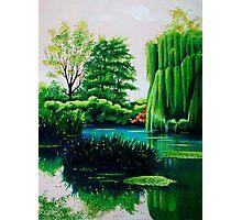 Breathtaking swamp Photographic Print