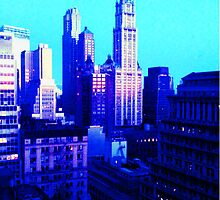 Woolworth Building NY by erosmessina