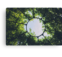 A break in the canopy. Canvas Print