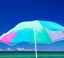 Beach Umbrella at the shore on Lake Michigan by Randall Nyhof