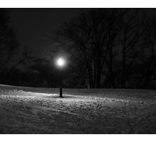 The Winter Sentinel Photographic Print
