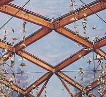 That great glass ceiling. by ellylucas