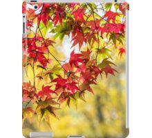The prettiest autumn curtain iPad Case/Skin