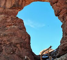 Turret Arch by NancyC