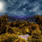 Blanket of Stars by RC deWinter