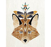 fox and butterfly Photographic Print