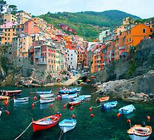 Italy. Cinque Terre marina  by JessicaRoss