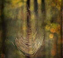 Weave Me A Dream by MotherNature2