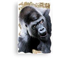 Say What Surprised Gorilla Canvas Print