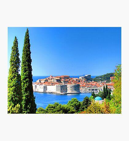 Croatia Treescape Photographic Print