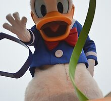 Donald Duck!  by Lexie  Ramos