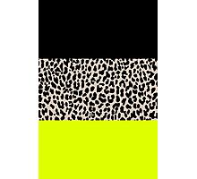 Leopard National Flag V Photographic Print