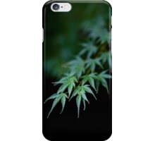 Maple in Green Kyoto iPhone Case/Skin