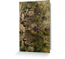 Refections on a Slough Greeting Card