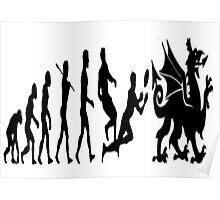 Welsh evolution Poster
